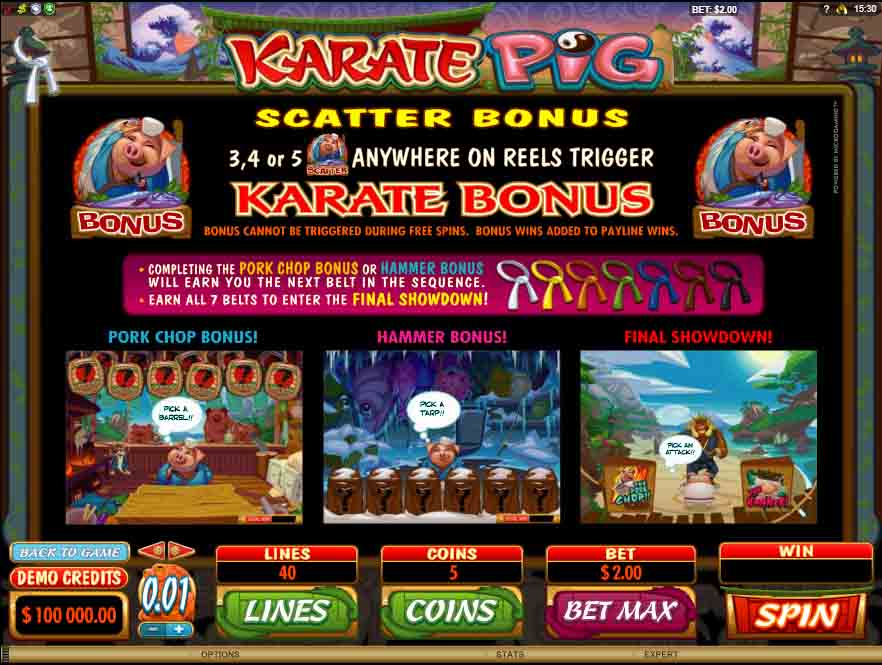 โบนัสในเกมสล็อต Karate Pig จากค่ายเกม Microgaming โบนัสหมุนสล็อตฟรี